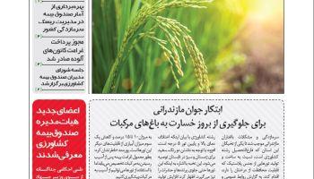 خبرنامه رویدادها و تحولات بیمه کشاورزی (شماره 7) منتشر شد